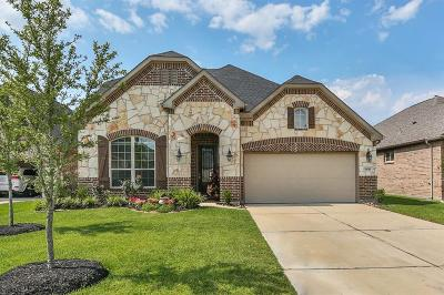 Spring Single Family Home For Sale: 3635 Cottage Pines Lane