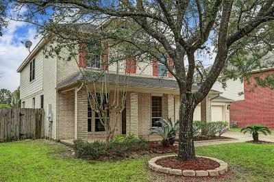 Pearland Single Family Home For Sale: 3210 Amerson Drive
