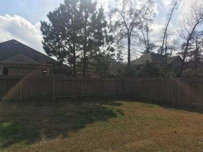 Conroe Single Family Home For Sale: 163 Meadow Valley Drive