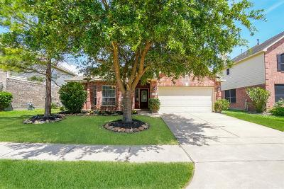 Katy Single Family Home For Sale: 24710 Dutton Point Drive