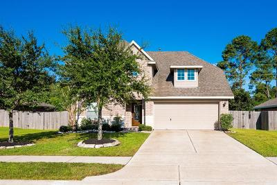 Pearland Single Family Home For Sale: 3704 Oak Crossing Drive