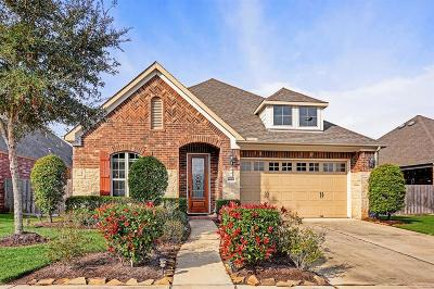 Sugar Land Single Family Home For Sale: 1619 Ralston Branch Way