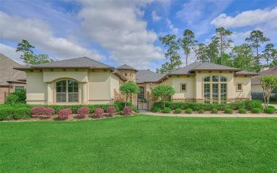 Spring Single Family Home For Sale: 5527 Bright Timber Landing Drive