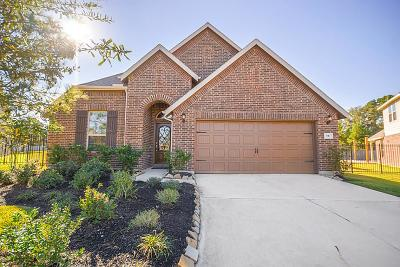 The Woodlands Single Family Home For Sale: 10 Pinestead