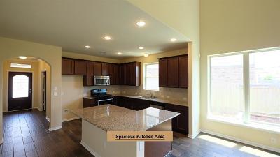 Katy Single Family Home For Sale: 5343 Ivory Glass Drive