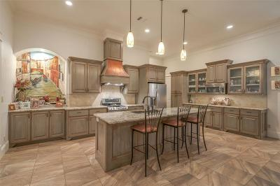Conroe Single Family Home For Sale: 2519 Centerline Road