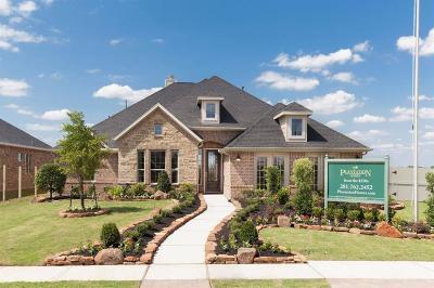 Rosenberg Single Family Home For Sale: 8323 Summer Breeze Lane