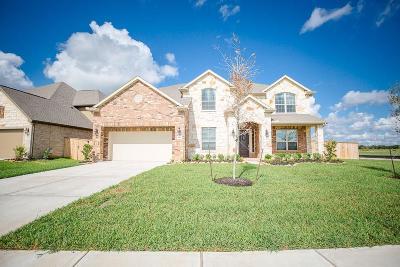 Lakes Of Savannah Single Family Home For Sale: 4602 Prairie Springs Lane