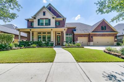 Sugar Land Single Family Home For Sale: 6210 S Tamarino Park Lane