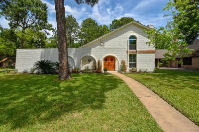 Houston Single Family Home For Sale: 9734 Truscon Drive