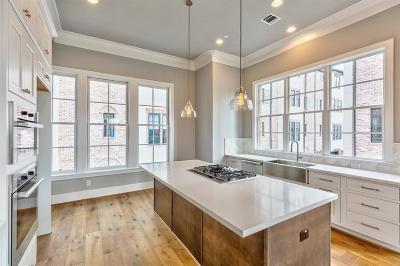 Houston Single Family Home For Sale: 19 Robita Street