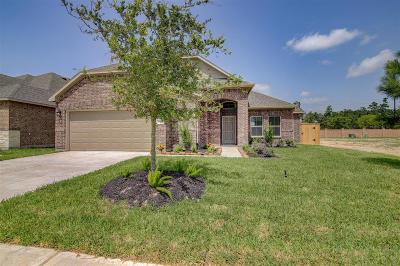Humble Single Family Home For Sale: 15227 Mortlich Gardens Drive