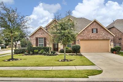 Katy Single Family Home For Sale: 27626 Dalton Bluff Court