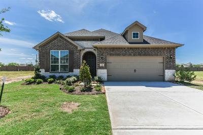 Rosenberg Single Family Home For Sale: 535 Kelley Green Court