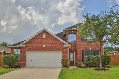 League City Single Family Home For Sale: 2735 Domenico Lane