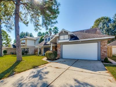 Houston Single Family Home For Sale: 4115 Briarchase Drive
