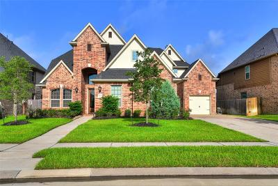 Katy Single Family Home For Sale: 2506 Haven Hill Drive