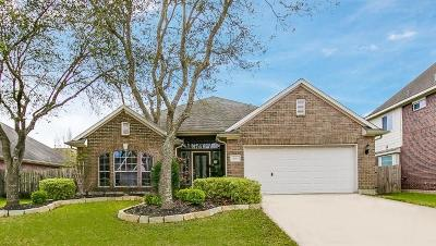 Pearland Single Family Home For Sale: 11712 Summer Brook Court