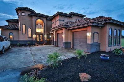 Single Family Home For Sale: 11608 Renaissance Drive