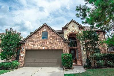 Houston Single Family Home For Sale: 13918 Summerfair Court