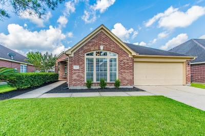 Manvel Single Family Home For Sale: 3606 Temple Drive
