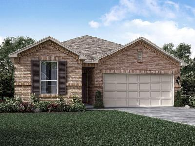 Pearland Single Family Home For Sale: 1992 Shim Ball Way
