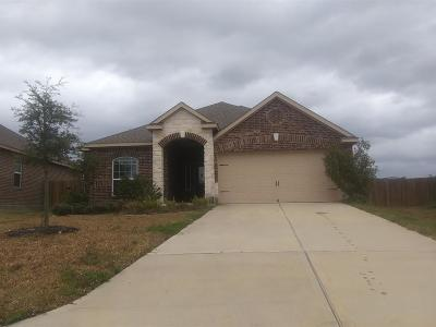 Hockley Single Family Home For Sale: 22602 Crate Falls Drive