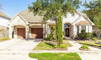Sugar Land Single Family Home For Sale: 1419 Ravenel Lane