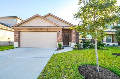 Katy Single Family Home For Sale: 5538 Casa Calvet Drive