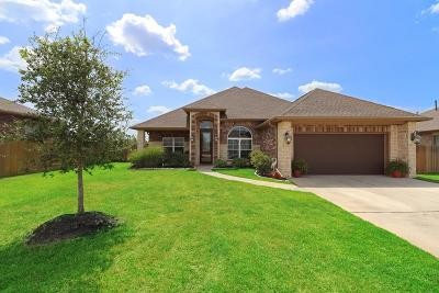 Magnolia Single Family Home For Sale: 18704 Knippa Court