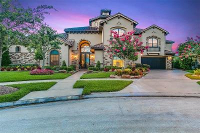 Sugar Land Single Family Home For Sale: 20 Sunset Park Lane
