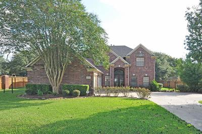 Sugar Land Single Family Home For Sale: 619 Oyster Creek