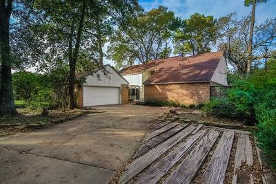 Houston Single Family Home For Sale: 10034 Briar Forest Drive