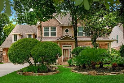 The Woodlands Single Family Home For Sale: 63 Degas Park Drive