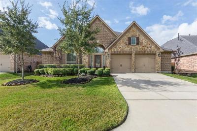 Spring Single Family Home For Sale: 18619 Roslyn Springs Drive