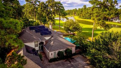 Kingwood Single Family Home For Sale: 4719 Breezy Point Drive