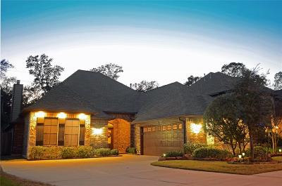 Tomball Single Family Home For Sale: 11119 Arthurian Dream Court