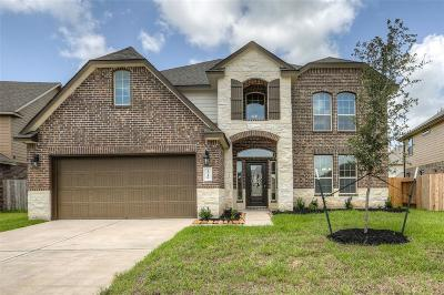 Pearland Single Family Home For Sale: 2710 Merlin Lane