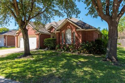 Houston Single Family Home For Sale: 11558 Withers Way Circle