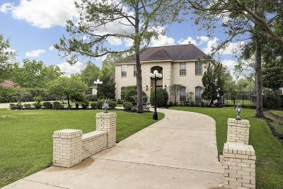 Friendswood Single Family Home For Sale: 910 Pine Hollow Drive