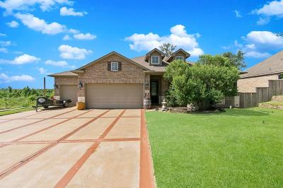 Magnolia Single Family Home For Sale: 27084 Palo Pinto Trail