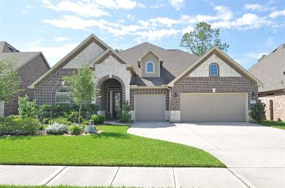 New Caney Single Family Home For Sale: 23423 Tavola Rosa Drive