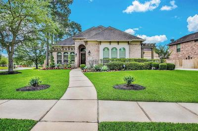 Single Family Home For Sale: 28330 Hollow Springs Lane