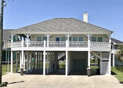Galveston County, Harris County Single Family Home For Sale: 2377 Sand Drift Lane