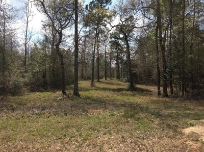 Montgomery County Farm & Ranch For Sale: 4111 Longhorn Drive