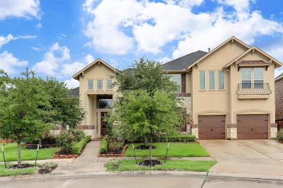 Missouri City Single Family Home For Sale: 6 Vale View Circle