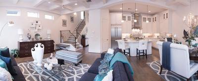 Houston Single Family Home For Sale: 1607 W Rose Terrace Lane