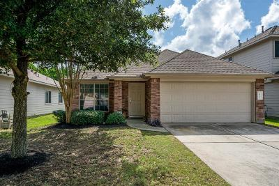 Tomball Single Family Home For Sale: 20318 Mossy Forest Court