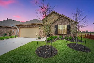 Katy Single Family Home For Sale: 3207 Francisco Bay Place