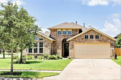 Rosharon Single Family Home For Sale: 9422 Crystal Bay Lane